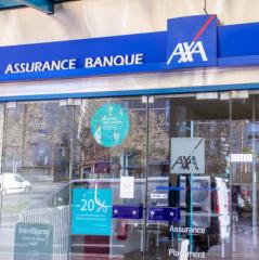 Eirl Habibou Michael Assurance Franconville La Garenne